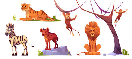 Cartoon wild animals tiger, monkeys, hyena, zebra and lion with ape. Jungle inhabitants predators and herbivorous in zoo park or safari outdoor area. Beasts in fauna, isolated vector illustrations set Illustration