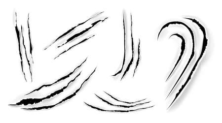 Cat claw scratches on paper. Black torn slashes from wild animal, tiger, bear or lion paws isolated on white background. Vector realistic sharp talons marks, trails and scrapes from monster nails