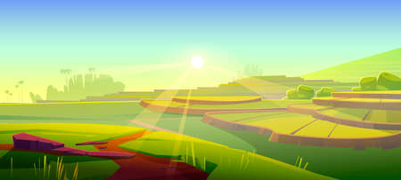 Rice field terraces, green paddy at morning. Vector cartoon illustration of summer landscape with crop plantation on hills at sunrise. Asian terraced farmland and sun rays Ilustração