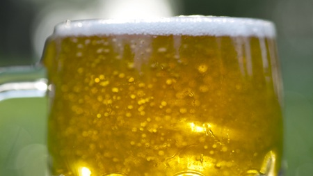 Frothy beer poured into glass. Oktoberfest theme.