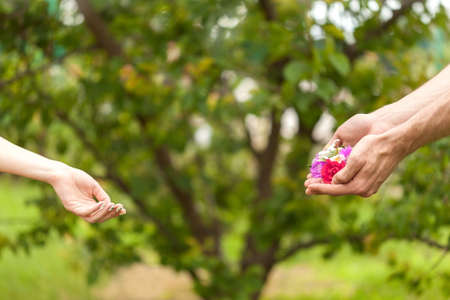 A man gives flowers to a woman. Flowers in men's hands. Hand gives flowers with love. romance. Floral and human hands on a blurred background. Flowers in two male hands are directed at female hands.
