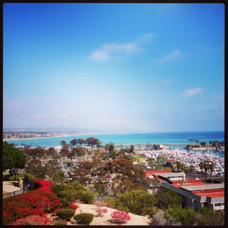A view of Dana Point HarborCA