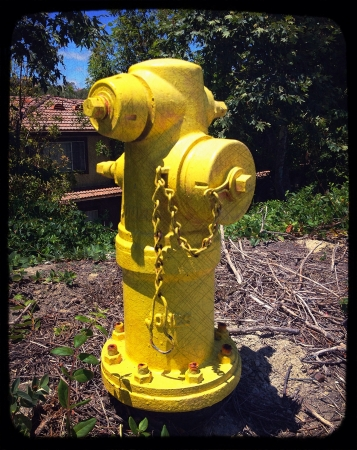 Image of yellow fire hydrant