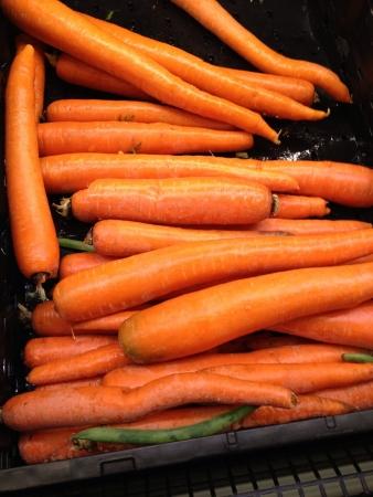 Jumbo orange carrots