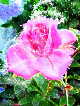rose in glitter Stock Photo