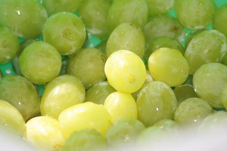육즙이 풍부한 녹색 포도 스톡 콘텐츠