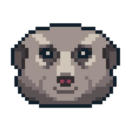 Pixel art vector meerkat isolated on white background.