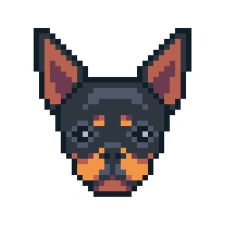 Pixel art chihuahua dog face vector icon.