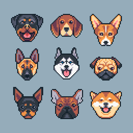 Pixel art vector dogs breeds icons set.