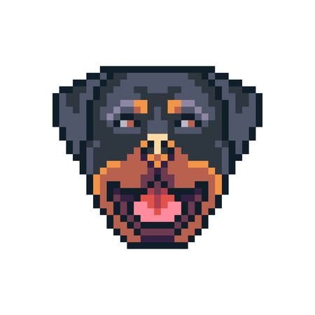 Pixel art rottweiler dog face vector icon. Ilustrace