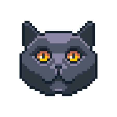Pixel art vector British shorthair icon isolated on white background. Stockfoto - 104604061