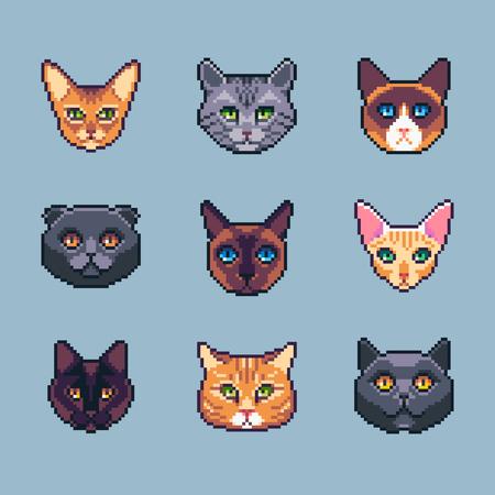Pixel art vector cat breeds icons set. Stock Illustratie