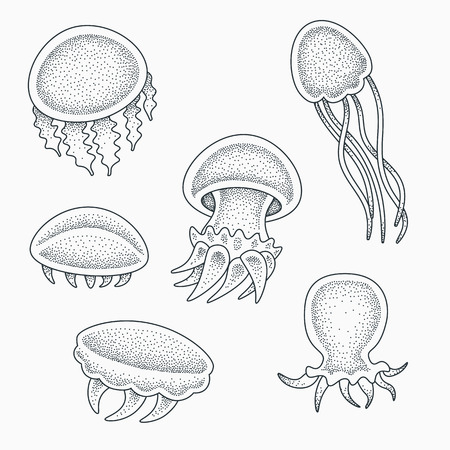 Small baby jellyfishes vector illustration. Blackwork dotwork tattoo design. Ilustrace