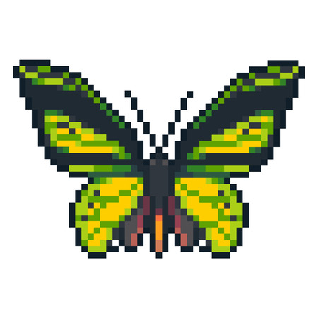 Pixel art vector birdwing butterfly isolated on white background.
