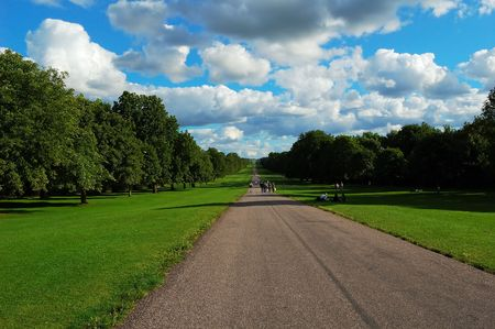 nebulous: A road in a park known as the Long Walk in Windsor