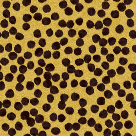 spotted fur: Cheetah fur texture with dark spots over a yellow background