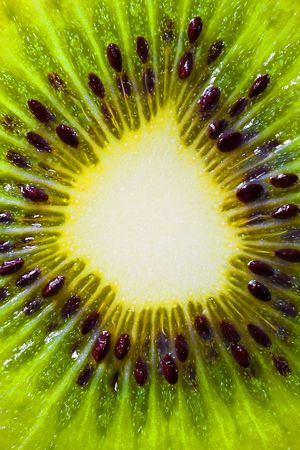 actinidia deliciosa: Macro picture of a kiwi fruit