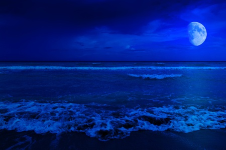 crescent moon: Night scene in a deserted beach with a crescent moon
