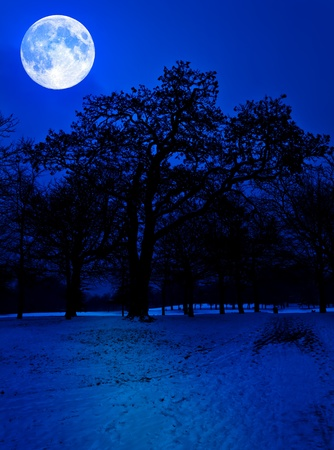 Snow covered park at midnight illuminated by a glowing full moon photo