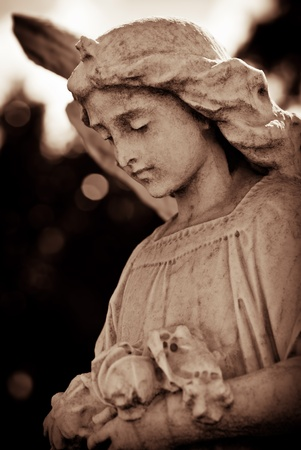 Weathered young angel in sepia tones photo