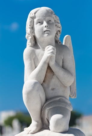 Praying infant angel with a blue sky background photo