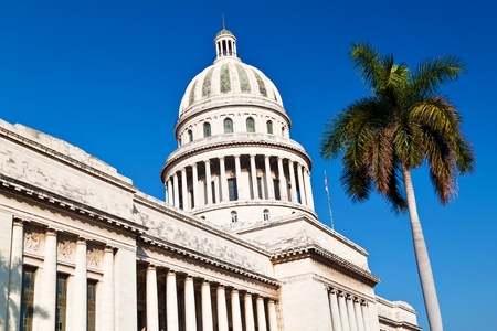 The Capitol building ( El Capitolio )  in Havana with a royal palm tree on a blue sky background photo