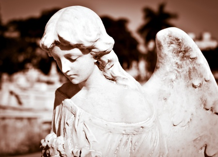 religious angel: Young female angel in sepia shades with a diffused cemetery background