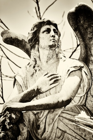 Angel statue in a cemetery toned in sepia photo