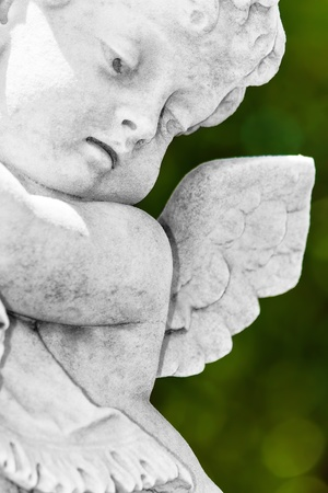 diffused: Infant angel with a diffused green vegetation background