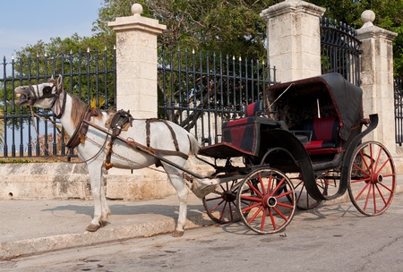 horse and carriage: Horse cart waiting for tourists in Old Havana