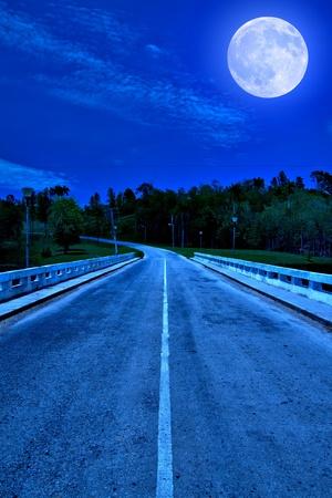 luz de luna: Camino solitario rodeado por un bosque iluminado por una brillante luna llena a la medianoche