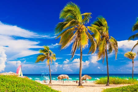 Varadero beach in Cuba Stock Photo - 11116408