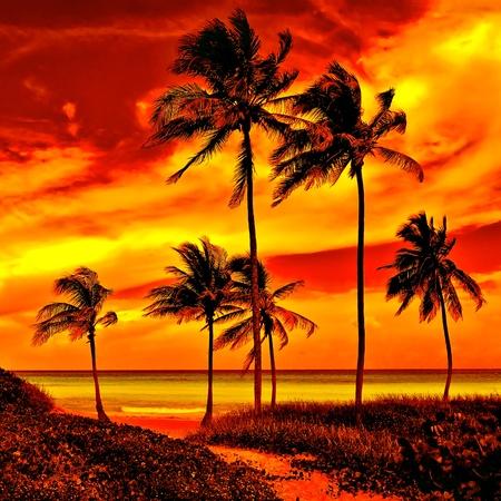 Muy colorido atardecer en una hermosa playa tropical Foto de archivo