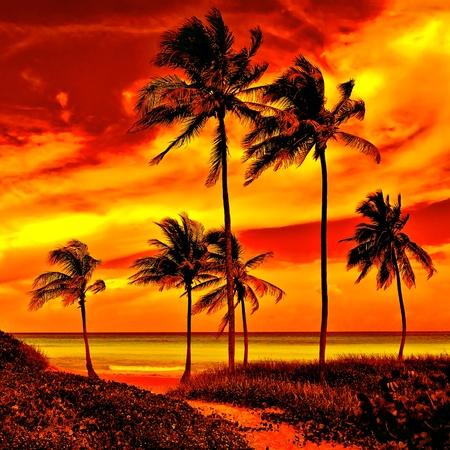 Velmi barevný západ slunce na krásné tropické pláži