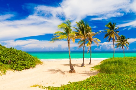 Beautiful tropical beach in Cuba Stock Photo