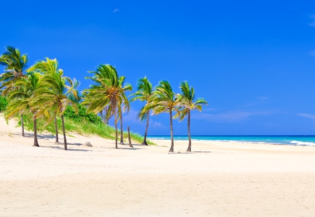The famous Varadero beach in Cuba photo