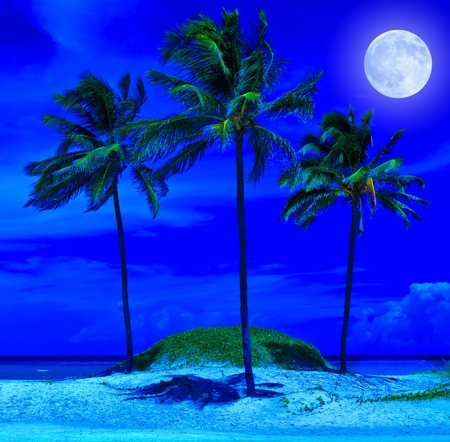 full moon romantic night: Tropical beach at night with a bright full moon