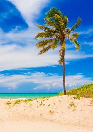 The beautiful tropical beach of Vardero  in Cuba Stock Photo - 11116376