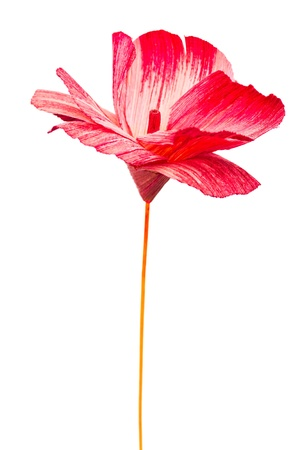 Red paper flower isolated on white photo