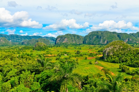The Vinales valley in Cuba, a famous tourist destination and a major tobacco growing area photo