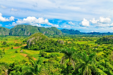 del: The Vinales valley in Cuba, a famous tourist destination and a major tobacco growing area Stock Photo