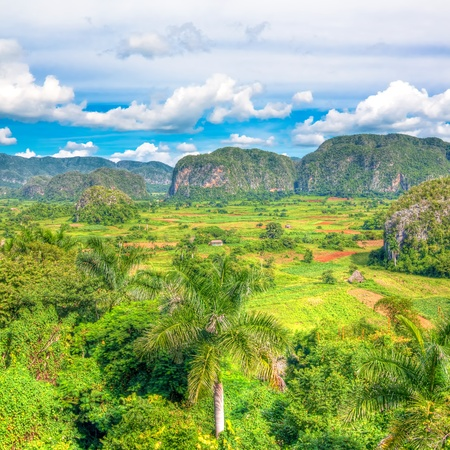 tourist destination: The Vinales valley in Cuba, a famous tourist destination and a major tobacco growing area Stock Photo