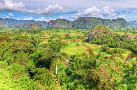 Panoramic view The Vinales valley in Cuba photo