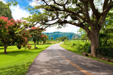 pinar: The Vinales valley in Cuba, a famous tourist destination and a major tobacco growing area Stock Photo