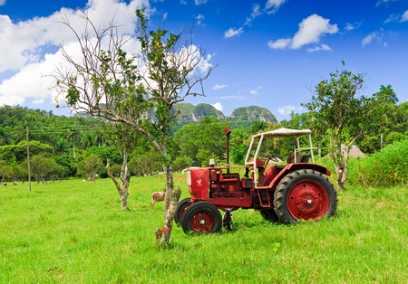 Old red tractor in a green field photo