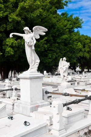 Angels in the famous Colon cemetery in Havana photo
