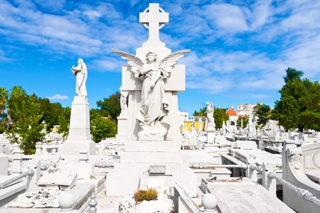 monumental cemetery: Beautiful angel with a general view of the monumental Colon cemetery in Havana Stock Photo