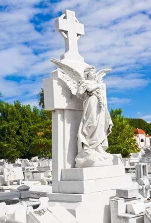 monumental cemetery: Beautiful marble angel in the monumental Colon cemetery in Havana Stock Photo
