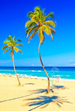The beautiful beach of Varadero in Cuba Stock Photo - 11996042