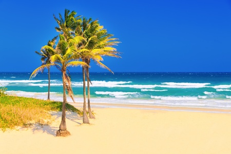 The cuban beach of Varadero on a beautiful summer day photo